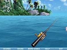 Sea Fishing