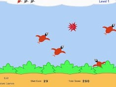 Super Duck Hunting