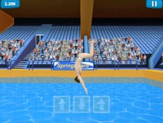 Summer Sports Diving